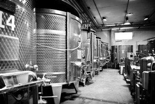 De wijnkelder